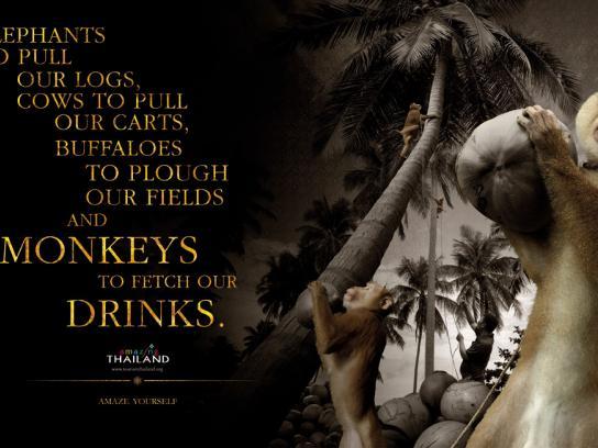 Tourism Thailand Print Ad -  Monkey