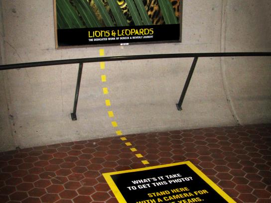 National Geographic Ambient Ad -  Leopard