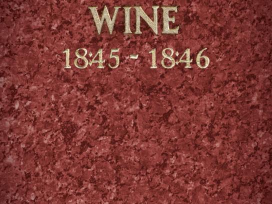 Nikol Print Ad -  Wine