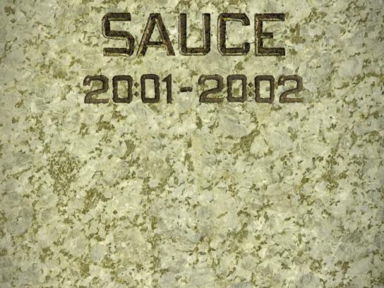 Nikol Print Ad -  Sauce