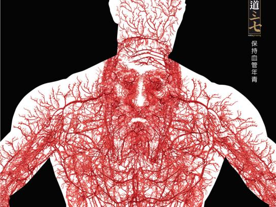 Notoginseng Print Ad -  Blood vessels, 1