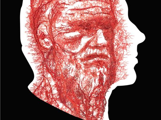 Notoginseng Print Ad -  Blood vessels, 2