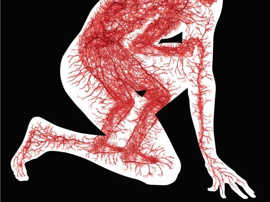 Notoginseng Print Ad -  Blood vessels, 3