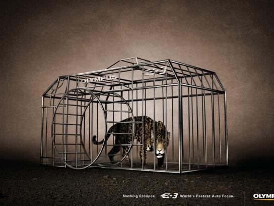 Olympus Print Ad -  Jaguar