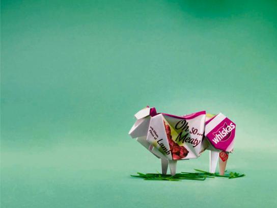 Oh So Origami, Lamb
