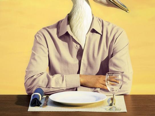 La Vela Print Ad -  Pelican