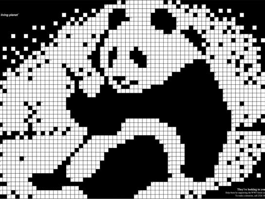 WWF Print Ad -  Crossword, Panda