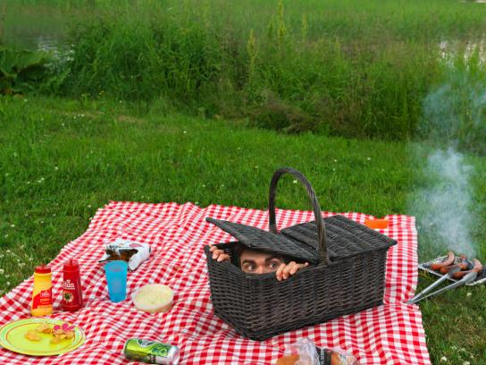 ThermaCELL Print Ad -  Picnic