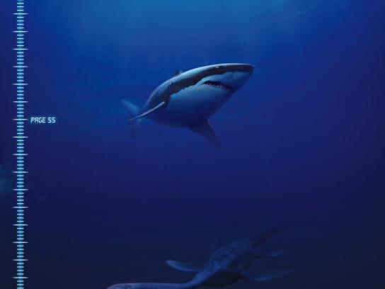 Scuba Diver Magazine Print Ad -  Predator of the Deep