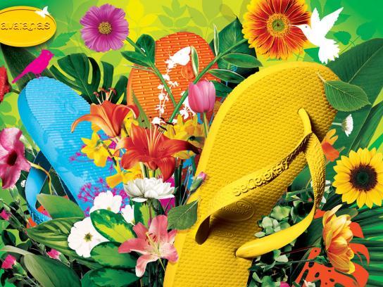 Havaianas Print Ad -  Plants