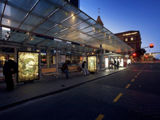 Robert Harris Ambient Ad -  Collection
