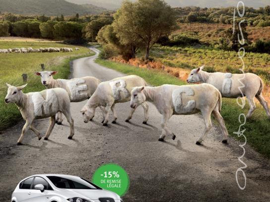 Seat Print Ad -  Sheep