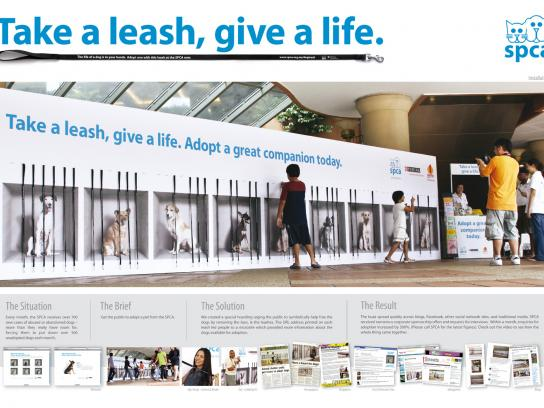 SPCA Ambient Ad -  Take a leash, give a life