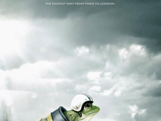 Speed frog