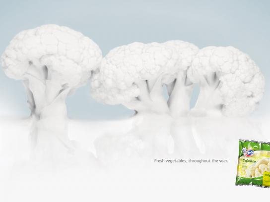 Ledo Print Ad -  Snowtrees