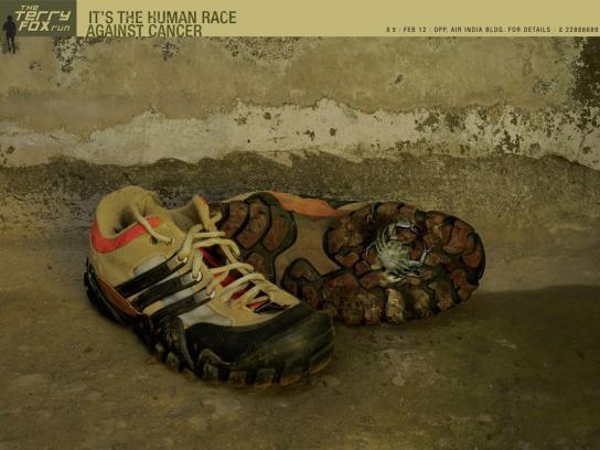 Sneakers, 1