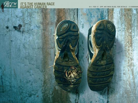 Sneakers, 2