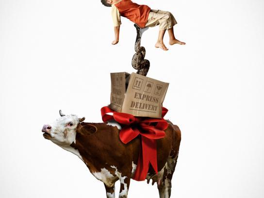Hasbro Print Ad -  Cow
