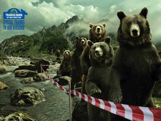 Transylvania Off Road Competition Print Ad -  The Bears