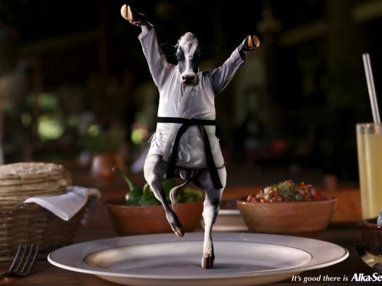 Karate cow