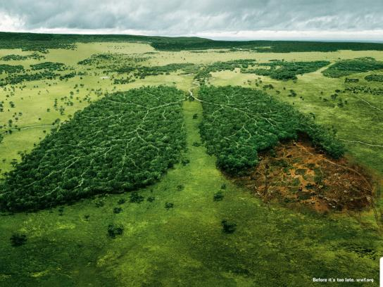 WWF Print Ad -  Lungs