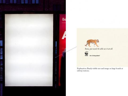 WWF Print Ad -  Tiger