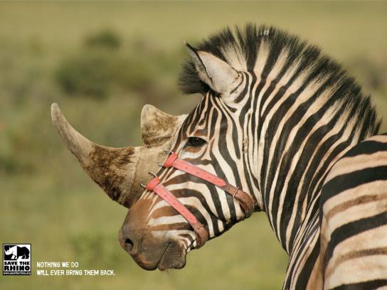 Save the Rhino Print Ad -  Zebra