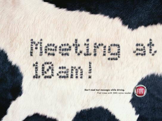 Fiat Print Ad -  SMS, Cow