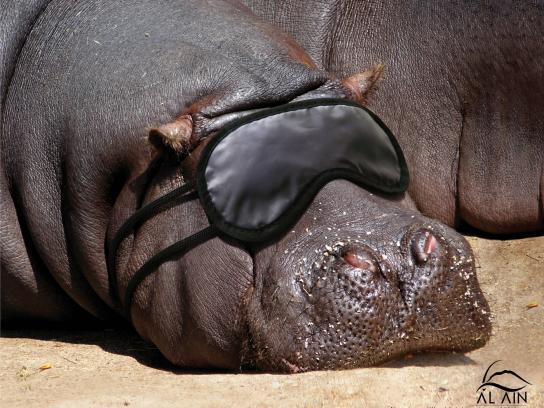 Al Ain Desert Wildlife Park Print Ad -  Hippo