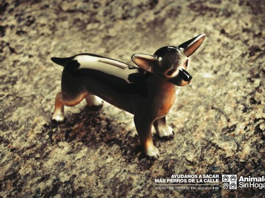 Animales Sin Hogar Print Ad -  Donations, Dog 1