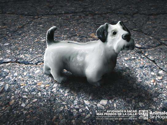 Animales Sin Hogar Print Ad -  Donations, Dog 2