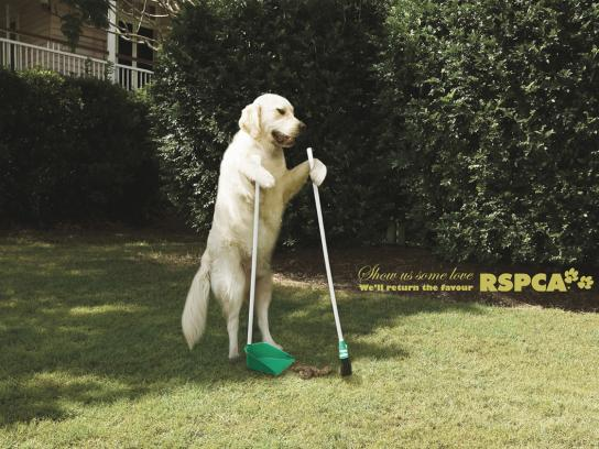 RSPCA Print Ad -  Clean up