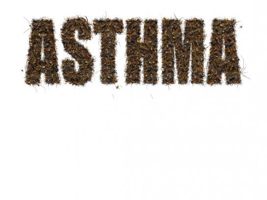 Terminix Print Ad -  Diseases, Asthma