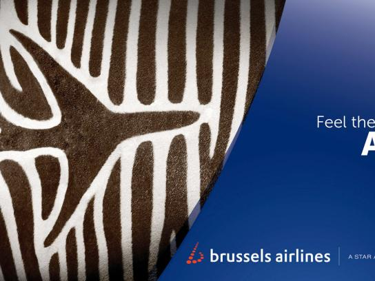 Brussels Airlines Outdoor Ad -  Feel the colours of Africa, Zebra