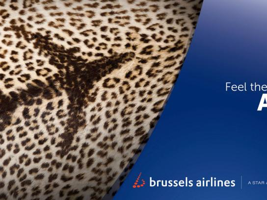 Brussels Airlines Outdoor Ad -  Feel the colours of Africa, Leopard