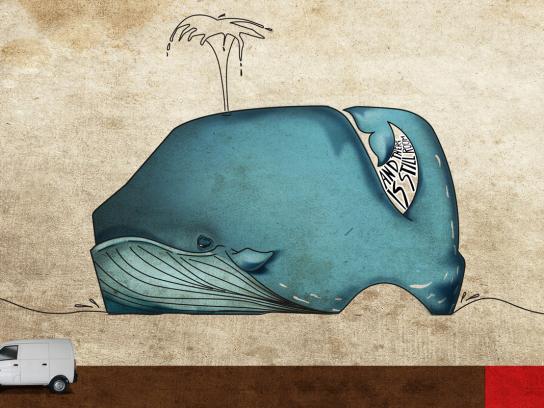 DFM Print Ad -  Whale