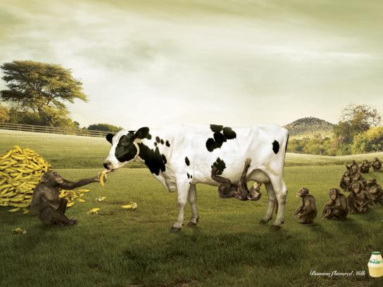 Binggrae Print Ad -  Farm