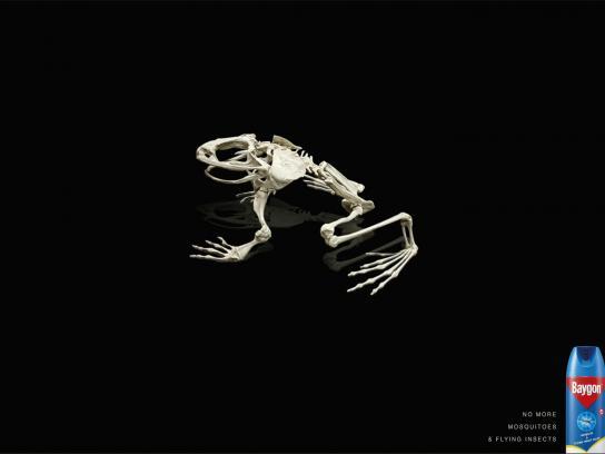 Baygon Print Ad -  Frog