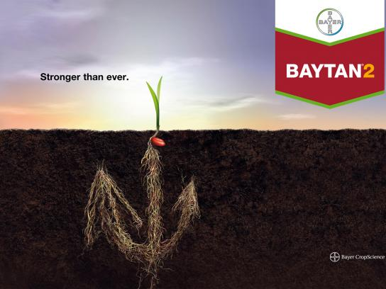 Baytan Print Ad -  Stronger than ever
