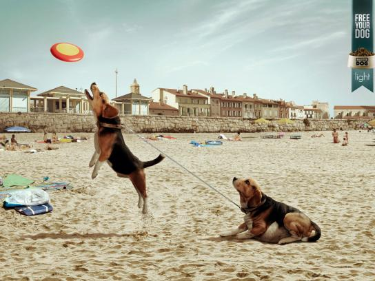 Master Dog Print Ad -  Free your dog, Beach