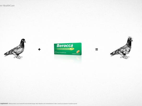Berocca Print Ad -  Pigeon