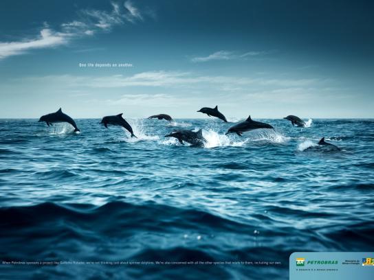 Petrobras Print Ad -  Dolphins