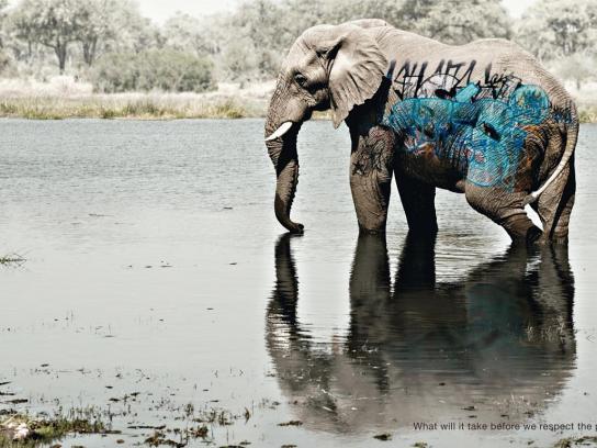 WWF Print Ad -  Biodiversity And Biosafety Awareness, Elephant