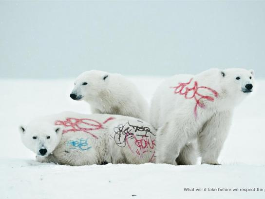 WWF Print Ad -  Biodiversity And Biosafety Awareness, Polar bear