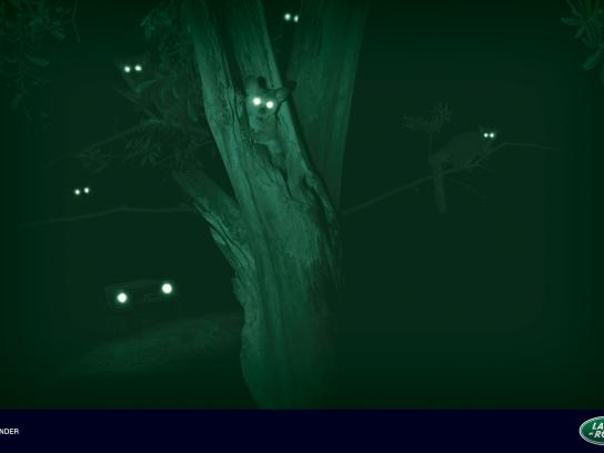 Land Rover Print Ad -  Night Eyes, Bush Baby