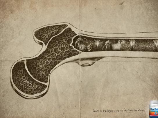 Calcibon Print Ad -  Bone