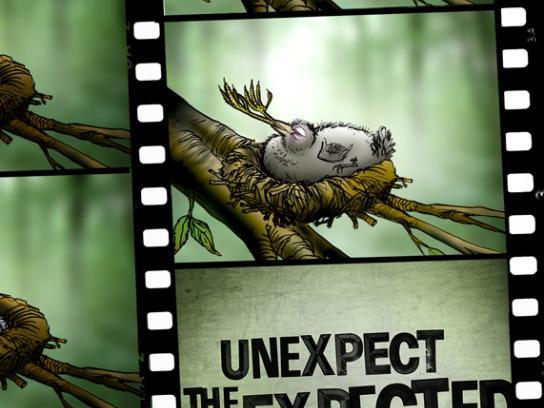 Calgary International Film Festival Print Ad -  Birds