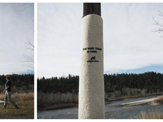 Calgary Zoo Ambient Ad -  Scratchpost