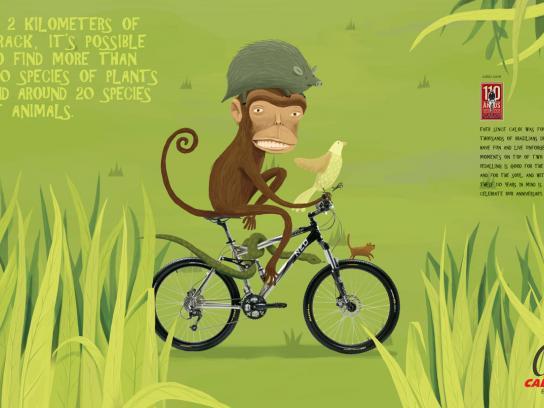 Caloi Print Ad -  Monkey