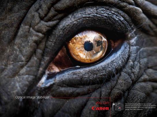 Canon Print Ad -  Elephant